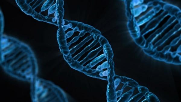 Transhumanisme ADN